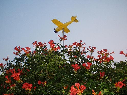 childplane